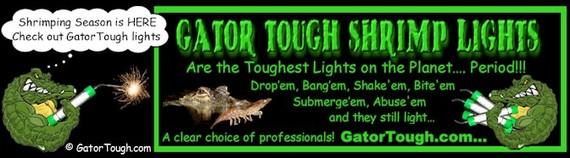 Free download program florida fishing license shrimp for Saltwater fishing license florida