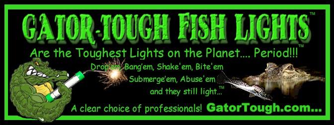 fish light reviews, Reel Combo