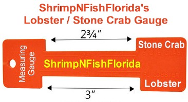 ShrimpNFishFlorida's Lobster AND Stone Crab Measuring Gauge