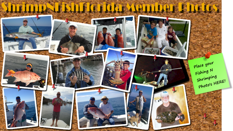 Florida fishing for Florida freshwater fishing license
