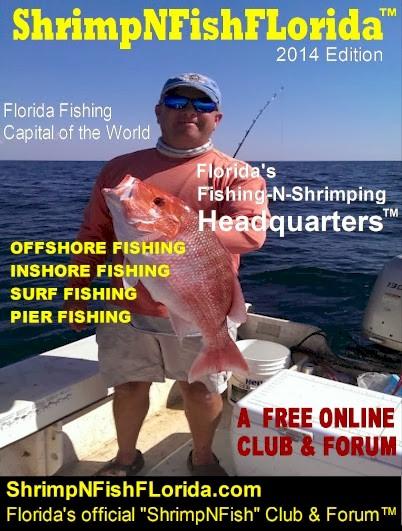 Fishing shrimping magazines for Free fishing magazines