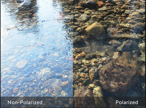 06bb83b4d7 non polarized vs polarized