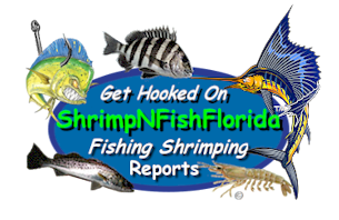 ShrimpNFishFlorida™ is Florida's Official Anglers Social Networking Community™