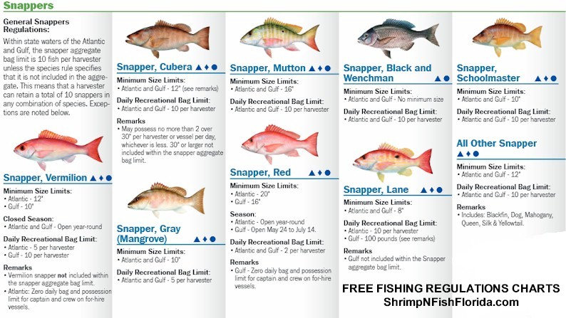 Florida saltwater fish size limits for Fishing license florida